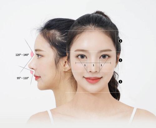 Golden ratio for female Asian noses